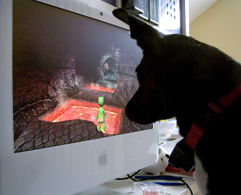 dogcomputes1.jpg