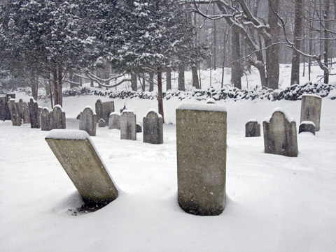 gravesweb.jpg