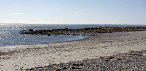 beachweb.jpg