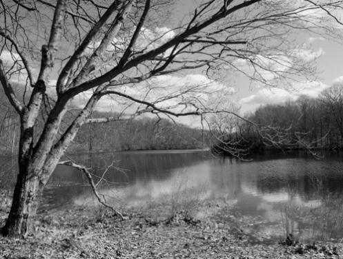 lake4bwweb.jpg