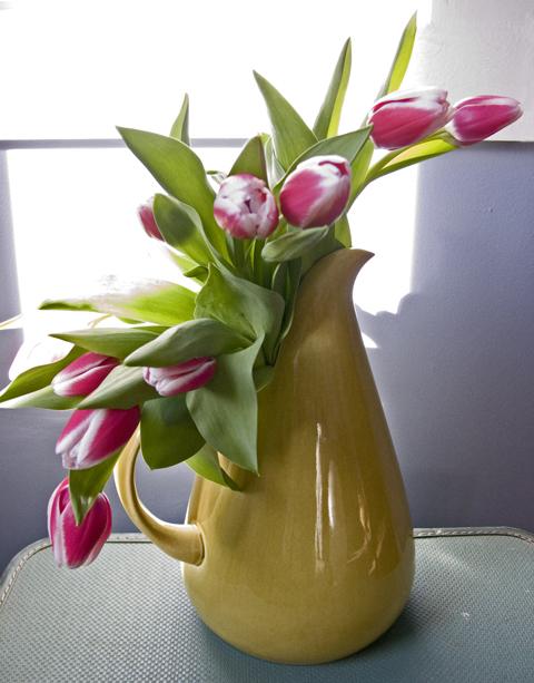 tulipvaseweb.jpg