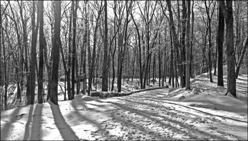 park_path